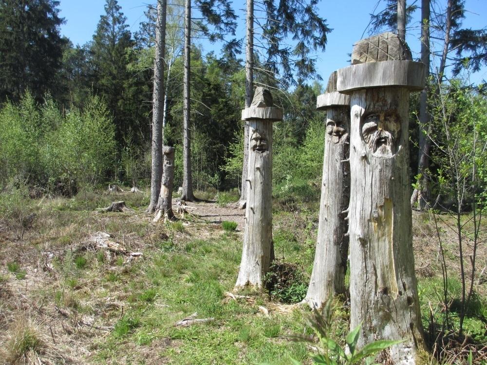 Schnitzereien stehen am Beginn der Weges in das Moor - Sterntaler Filze