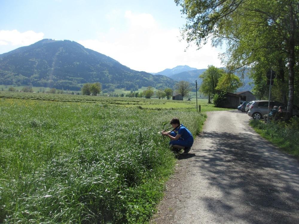 Vom Wanderparkplatz ist es nicht weit bis zu den Sterntaler Filzen