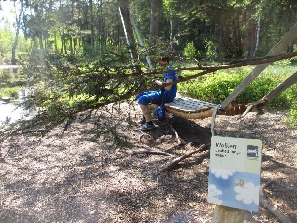Holzliegen am Moorsee - Sterntaler Filze
