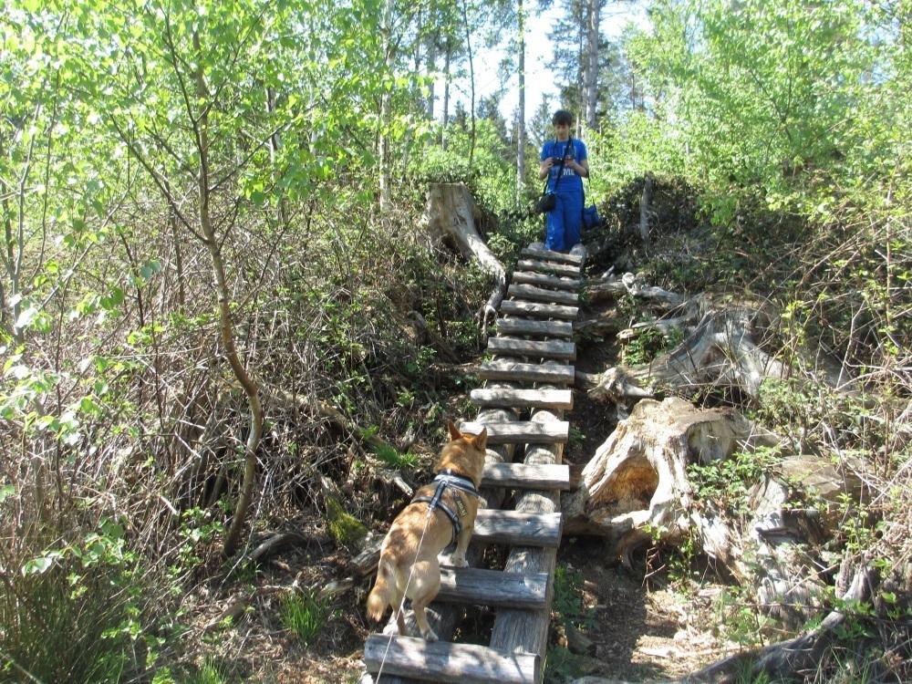 Klettererlebnis für Kinder - Sterntaler Filze