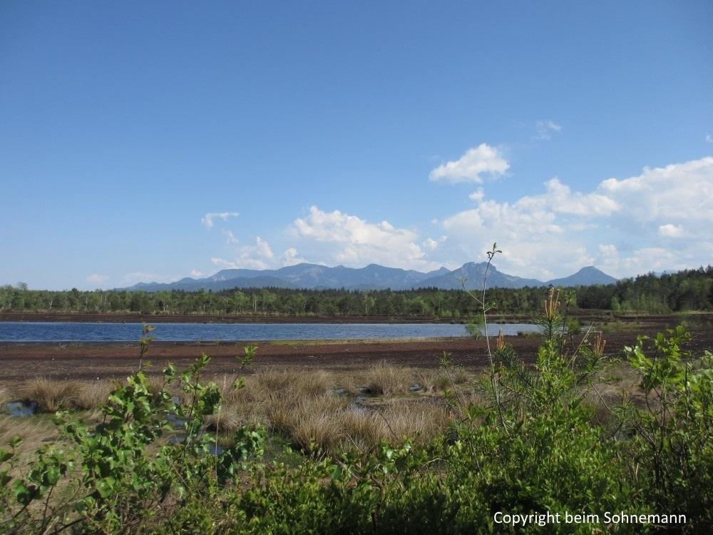 Blick aus der Vogelbeobachtungsstation auf das Voralpenland