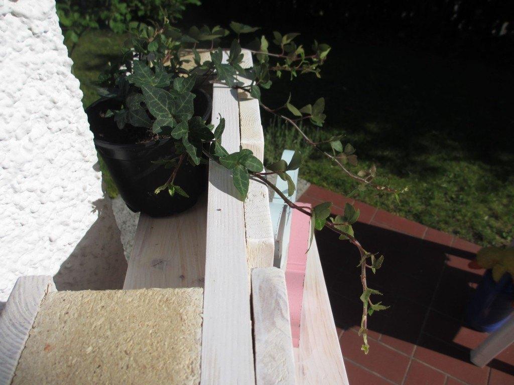 Paletten-Regal-bauen-mit-Blumenkasten