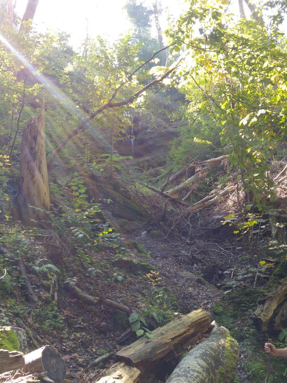 Ein erster kleiner Wasserfall, kaum zu erreichen durch den wild gelassenen Wald