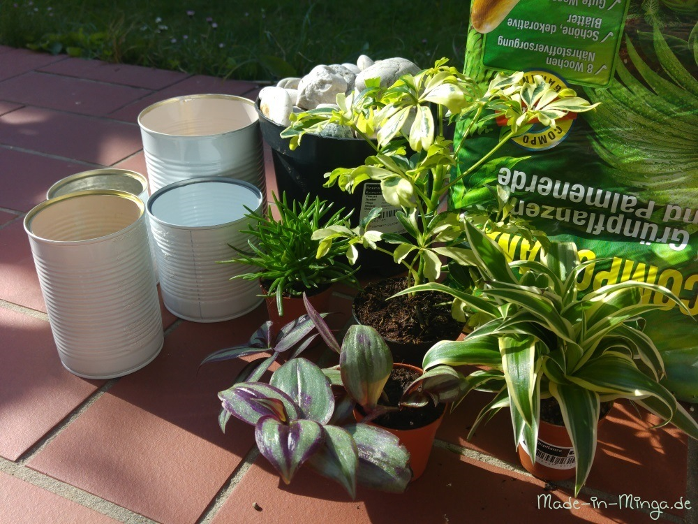 Pflanzen und Erde vorbereiten für das Bepflanzen