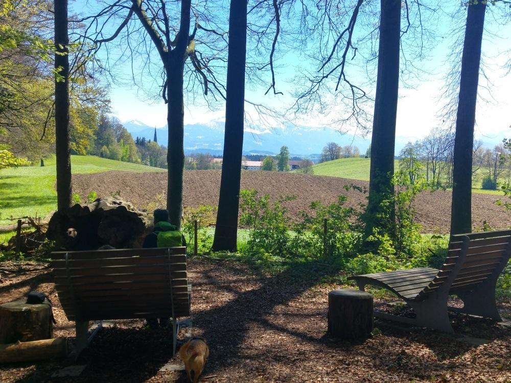 Holzliegen mit wunderbarem Blick in das Voralpenland - Ausflug zur Ratzinger Hoehe