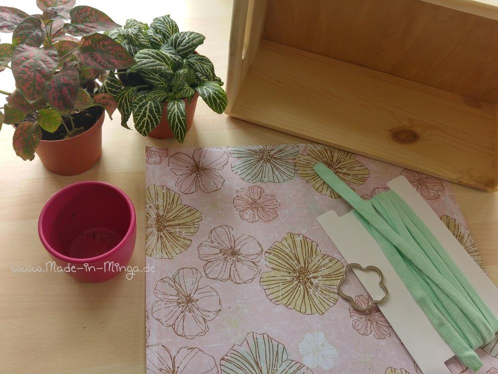 Minipflanze, Holzkasten und Faden für die Blumenampel