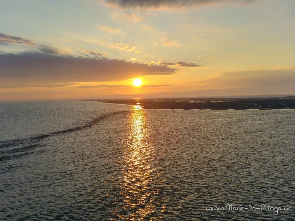 Sonnenaufgang auf Langeness