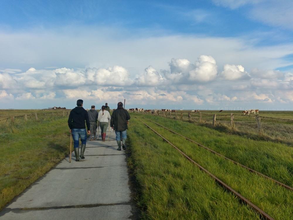 Unsere Gruppe von Kuhhirten auf dem Weg zur Herde