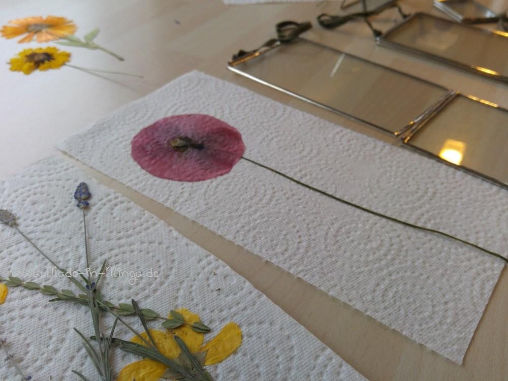 passende Blüten für die Rahmen wählen