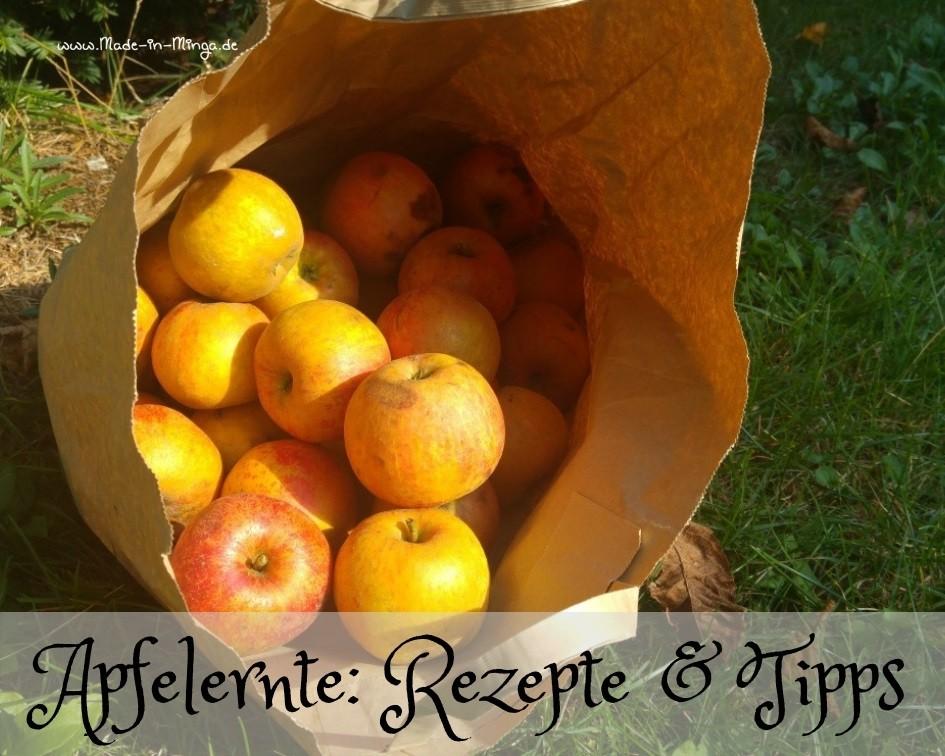Ideen zur Verwertung der Äpfel im Herbst