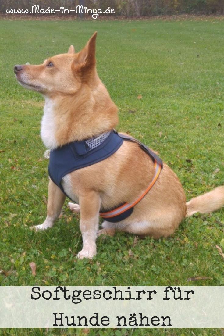 Softgeschirr für Hunde nähen - eine Anleitung