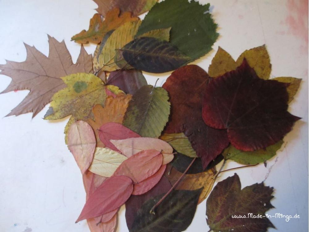 Blätter trocknen um eine Blätter-Girlande zu basteln im Herbst