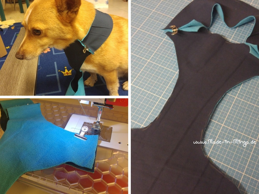 Das Softgeschirr dem Hund anziehen und auf die richtige Größe zurecht stecken