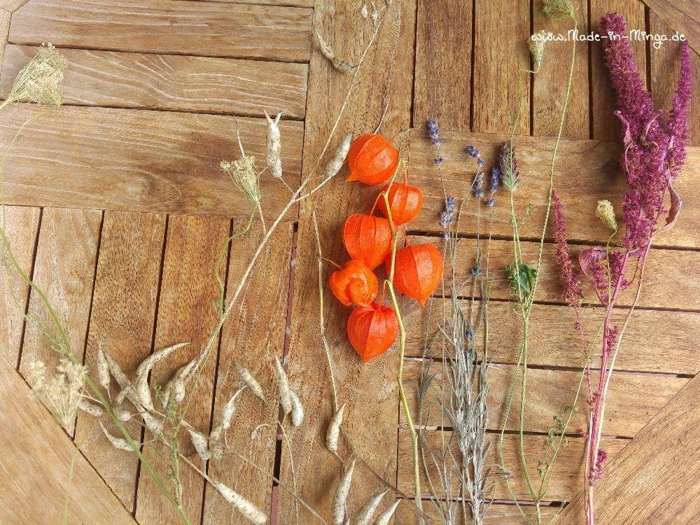 getrocknete Blumen für das Trockengesteck im Herbst